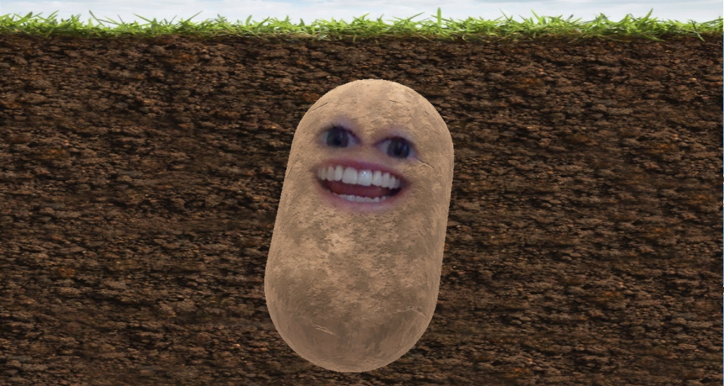 How to turn yourself into a potato on Zoom
